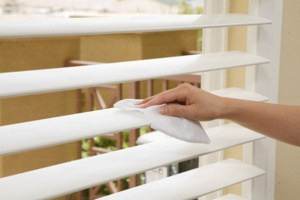 Tampa Window/Blind Cleaning